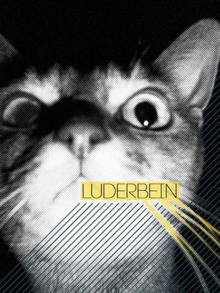 http://silvio-thamm.de/files/gimgs/th-14_Luderbein (2009).jpg